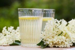 Recept na bezinkovou limonádu