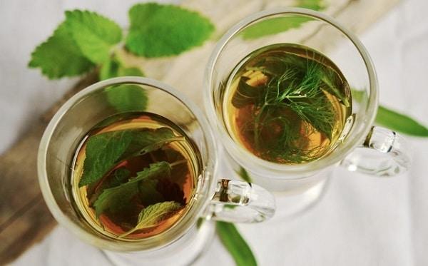Recept na skvělý kopřivový čaj