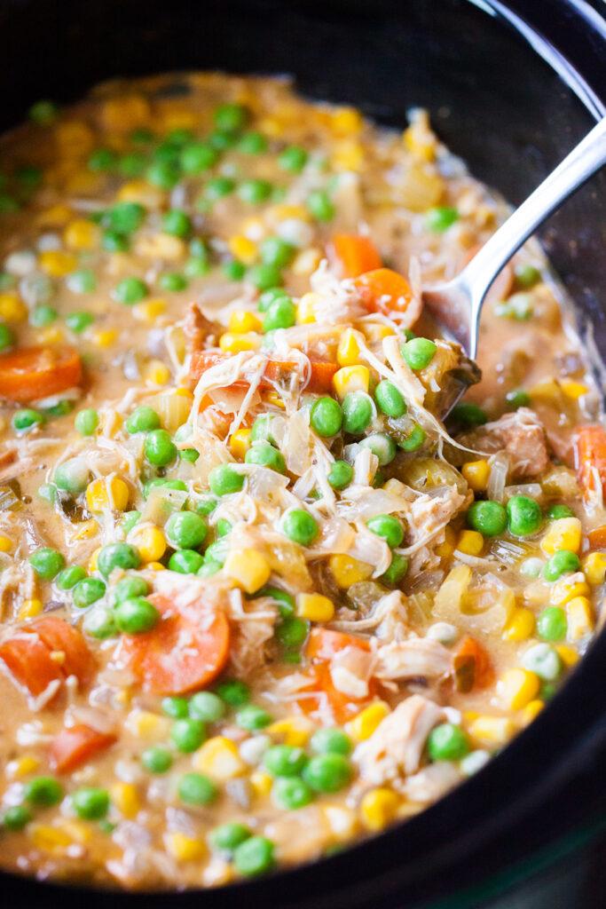 smetanovo-zeleninová polévka z elektrického hrnce