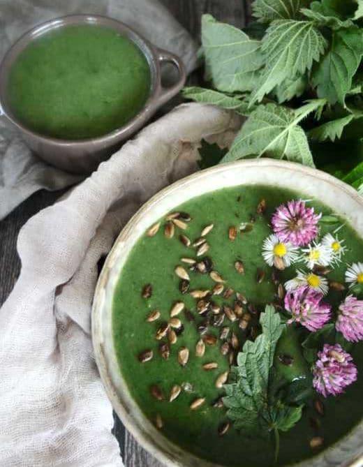 Kopřivový krém se slunečnicovými semínka a cuketou