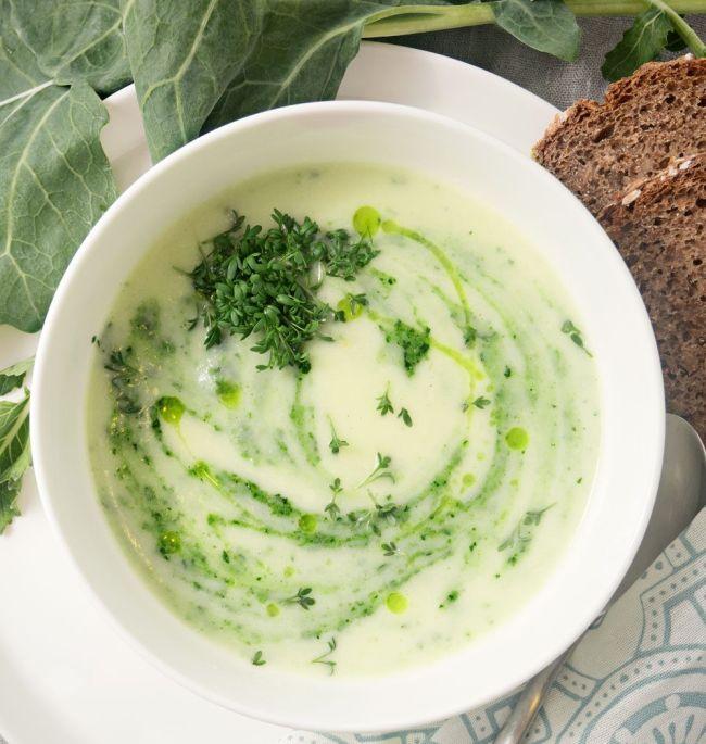 Smetanová polévka s kedlubnou, ozdobená čerstvou řeřichou