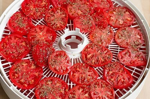 Kolečka rajčat v sušičce na ovoce a zeleninu, ochucené bylinkami a solí.